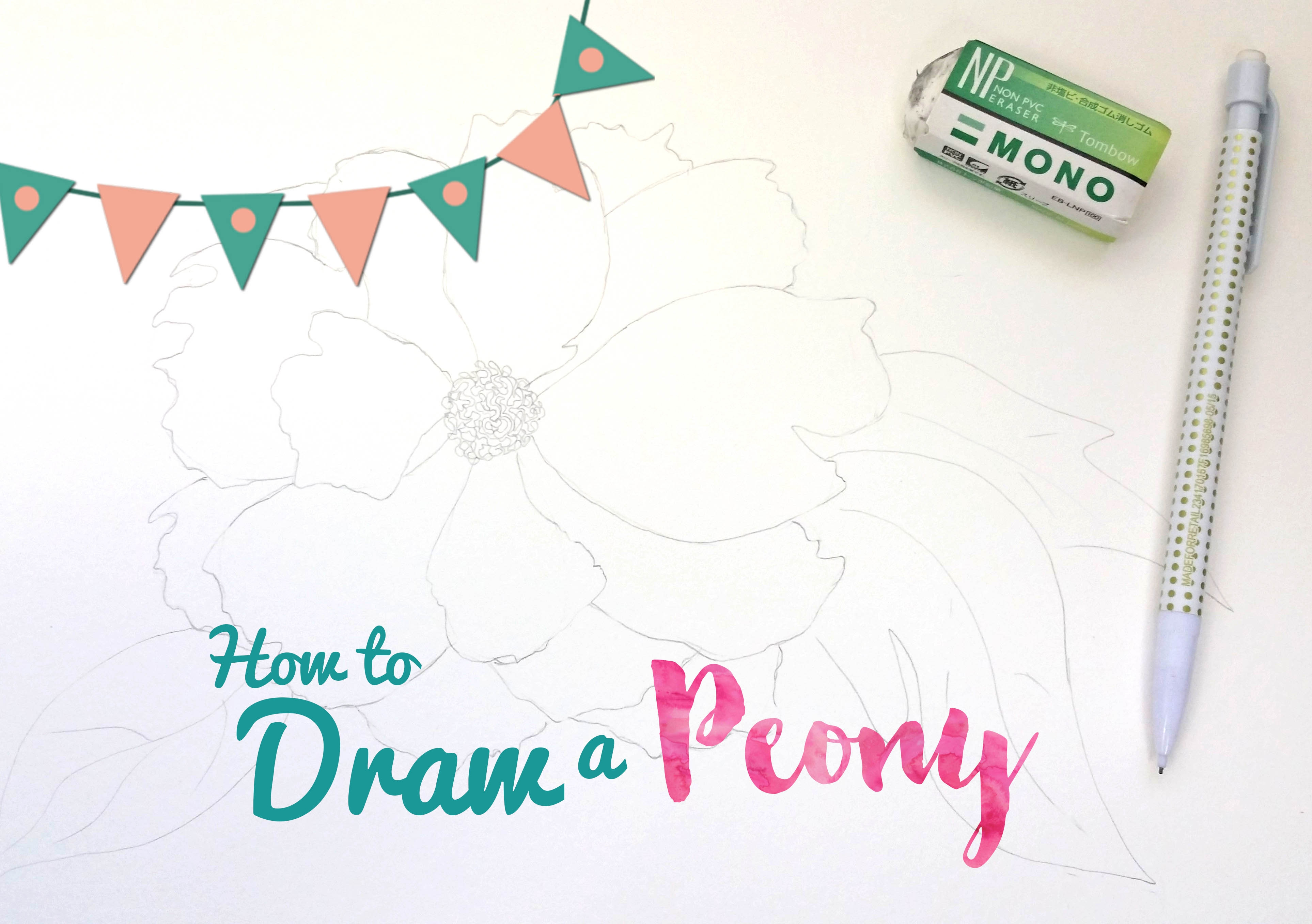 How to draw a peony ashleypicanco for How to draw the flower of life step by step