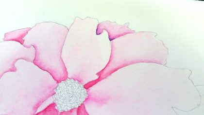 how to paint a peony in watercolor