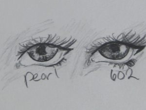 Then I decided to do a comparison between the two pencils.  The left eye sketch is with the pearl, the right with the 602.  You can see with the 602 I was able to achieve darker sections, but it also was more easily smudged (which can be both a good and a bad thing).  The pearl gave a decent range of tones, went on the paper smooth, and seemed to resist smudging better than the 602.  Both performed great, with their own pros and cons.