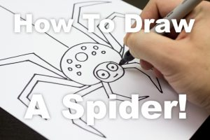 Next, a fun spider!