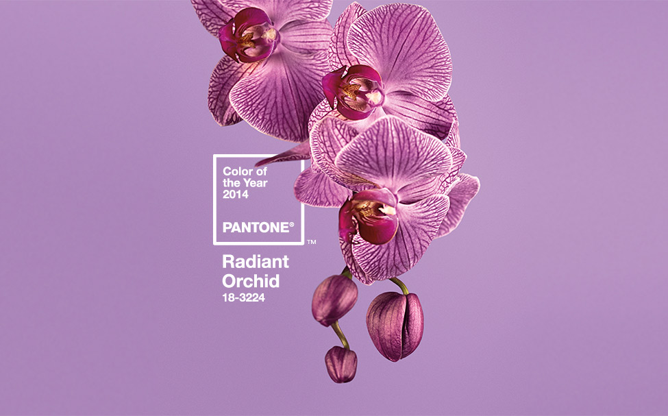 Radiant Orchid in fashion, home decor, art
